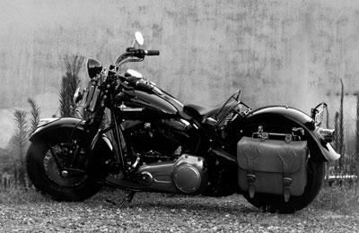 LEATHER-TUNA-Kiri_bike4.jpg